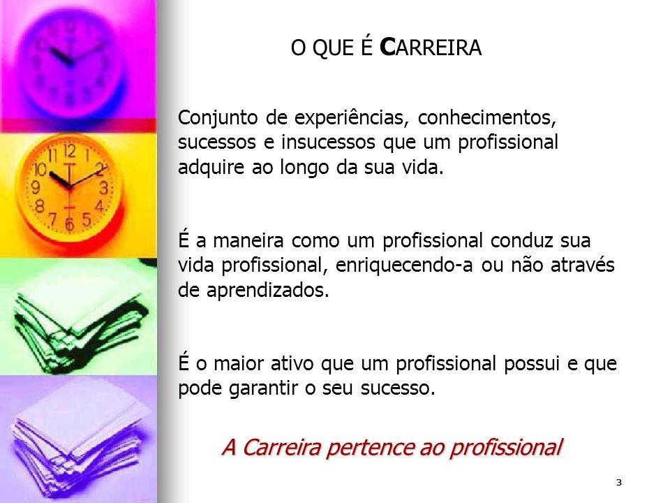 3 Conjunto de experiências, conhecimentos, sucessos e insucessos que um profissional adquire ao longo da sua vida. É a maneira como um profissional co