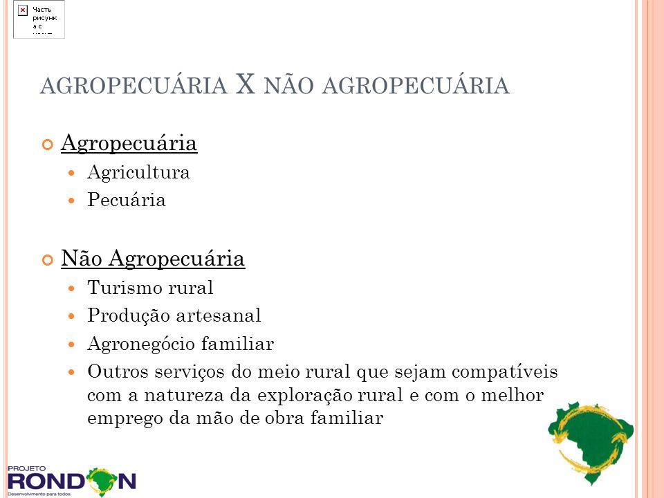 AGROPECUÁRIA X NÃO AGROPECUÁRIA Agropecuária Agricultura Pecuária Não Agropecuária Turismo rural Produção artesanal Agronegócio familiar Outros serviç
