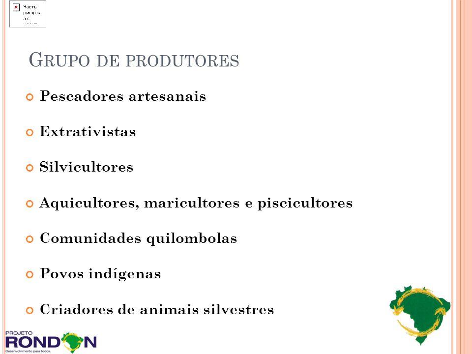 G RUPO DE PRODUTORES Pescadores artesanais Extrativistas Silvicultores Aquicultores, maricultores e piscicultores Comunidades quilombolas Povos indíge