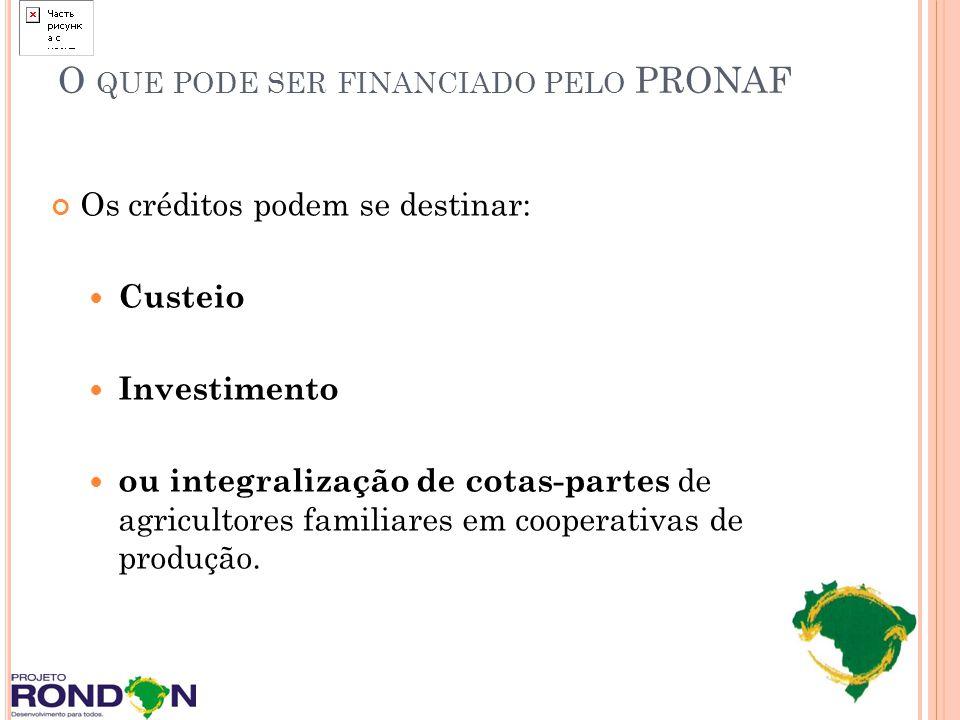 O QUE PODE SER FINANCIADO PELO PRONAF Os créditos podem se destinar: Custeio Investimento ou integralização de cotas-partes de agricultores familiares