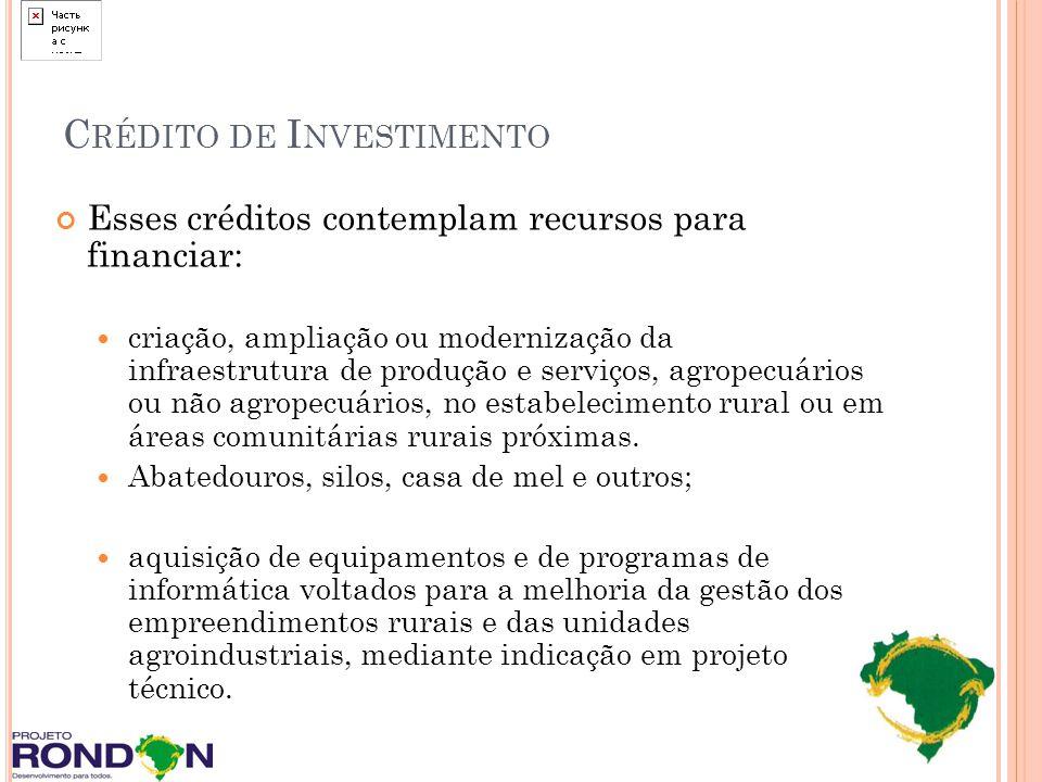 C RÉDITO DE I NVESTIMENTO Esses créditos contemplam recursos para financiar: criação, ampliação ou modernização da infraestrutura de produção e serviç