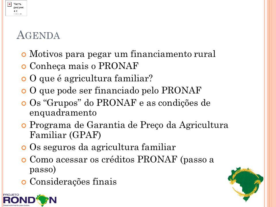 P ROGRAMA DE G ARANTIA DE P REÇO DA A GRICULTURA F AMILIAR (GPAF) Programa que garante ao produtor um preço de garantia igual ou próximo do custo de produção.
