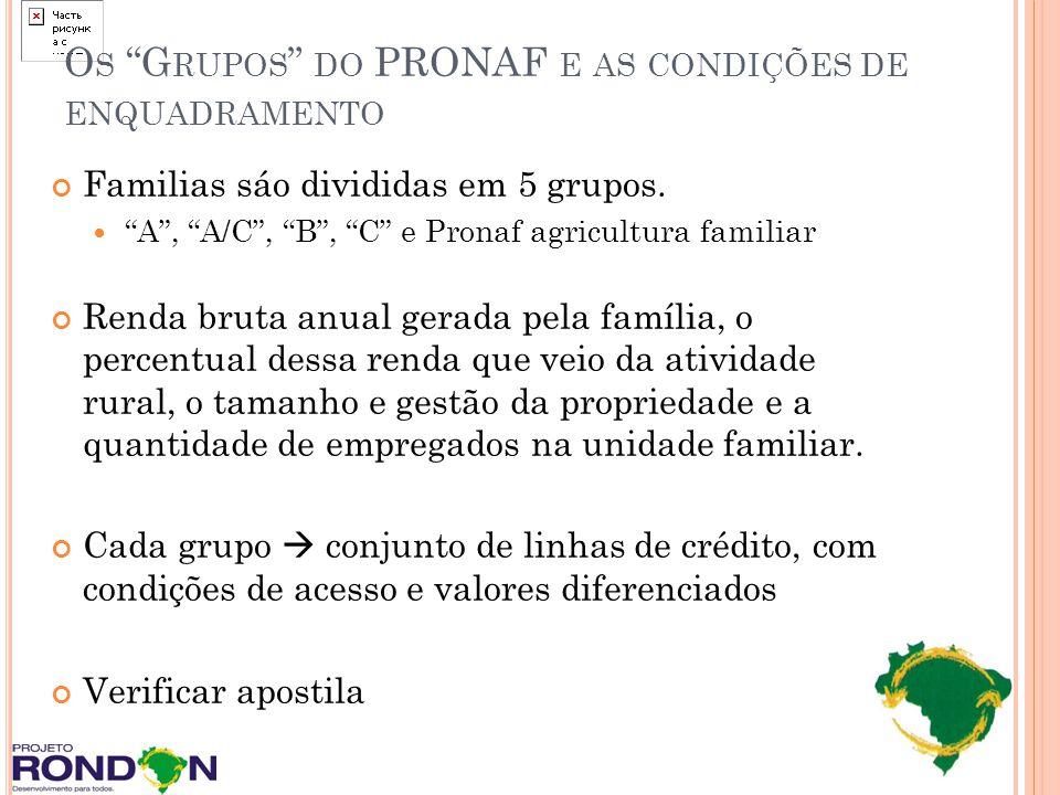 O S G RUPOS DO PRONAF E AS CONDIÇÕES DE ENQUADRAMENTO Familias sáo divididas em 5 grupos. A, A/C, B, C e Pronaf agricultura familiar Renda bruta anual