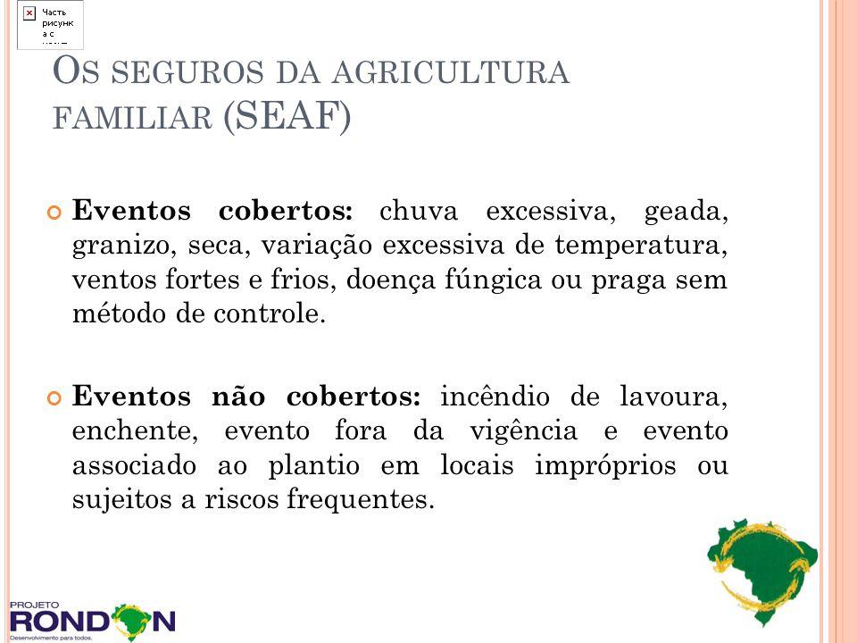 O S SEGUROS DA AGRICULTURA FAMILIAR (SEAF) Eventos cobertos: chuva excessiva, geada, granizo, seca, variação excessiva de temperatura, ventos fortes e