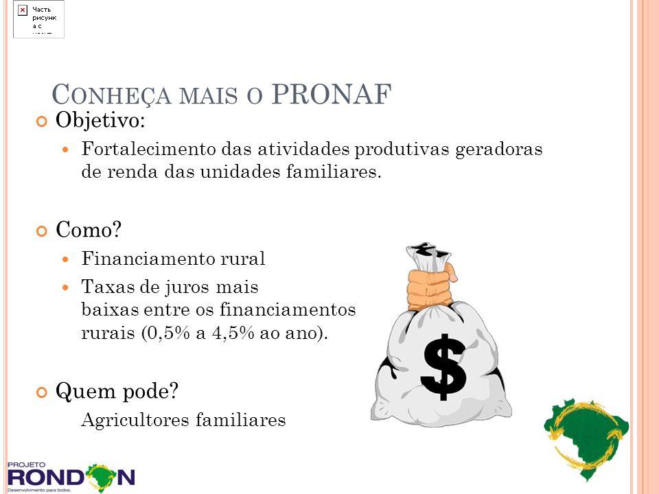 Objetivo: Fortalecimento das atividades produtivas geradoras de renda das unidades familiares. Como? Financiamento rural Taxas de juros mais baixas en