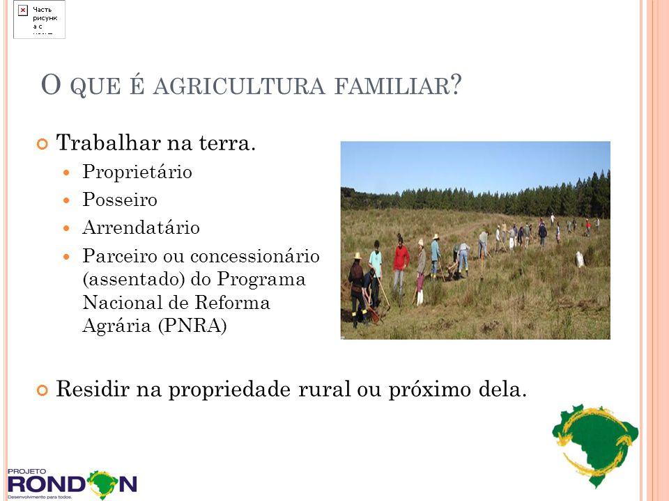 O QUE É AGRICULTURA FAMILIAR ? Trabalhar na terra. Proprietário Posseiro Arrendatário Parceiro ou concessionário (assentado) do Programa Nacional de R