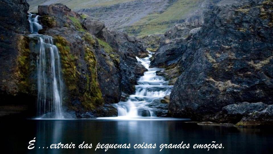 Ser feliz é sentir o sabor da água, a brisa no rosto, o cheiro da terra molhada.