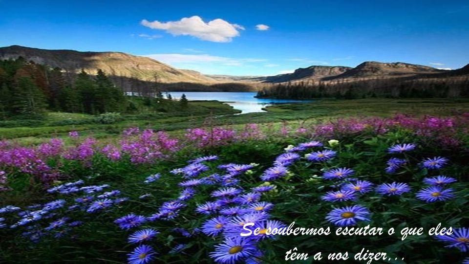 Viver significa saber sentir e curtir cada sentimento e cada momento que ele representa...