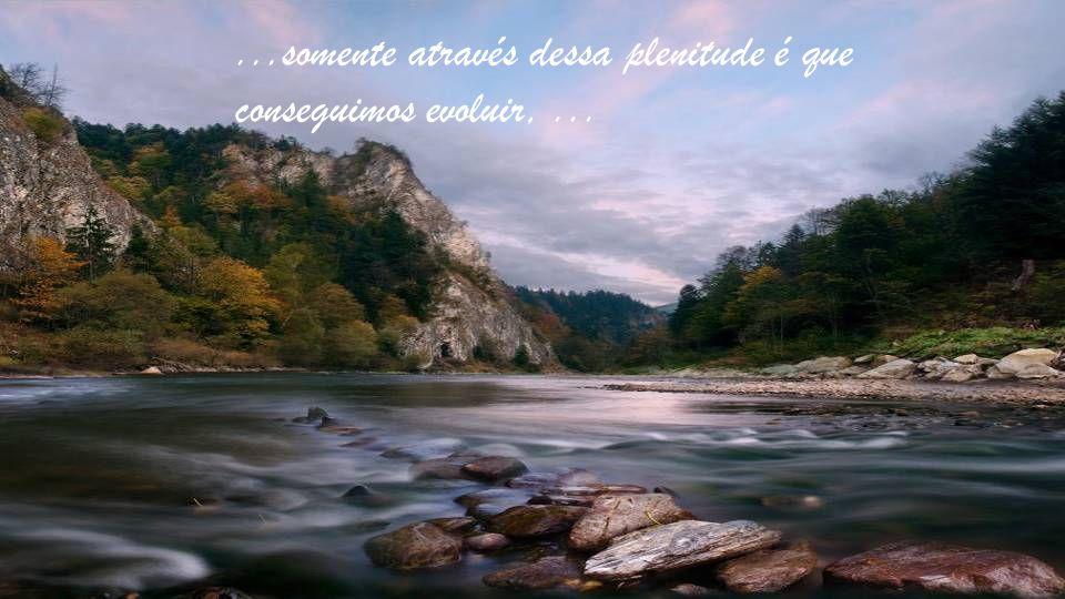 ...somente através dessa plenitude é que conseguimos evoluir,...