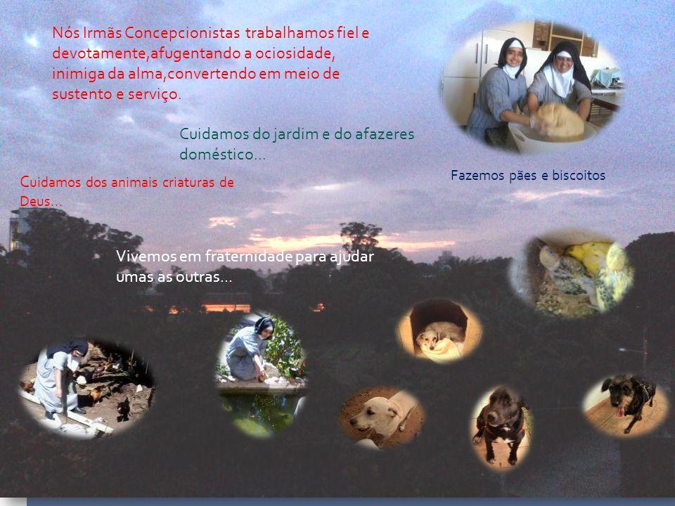 Fazemos pães e biscoitos C uidamos dos animais criaturas de Deus...