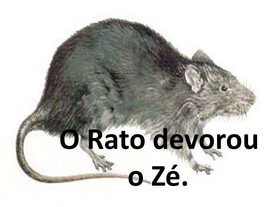 O Rato devorou o Zé.