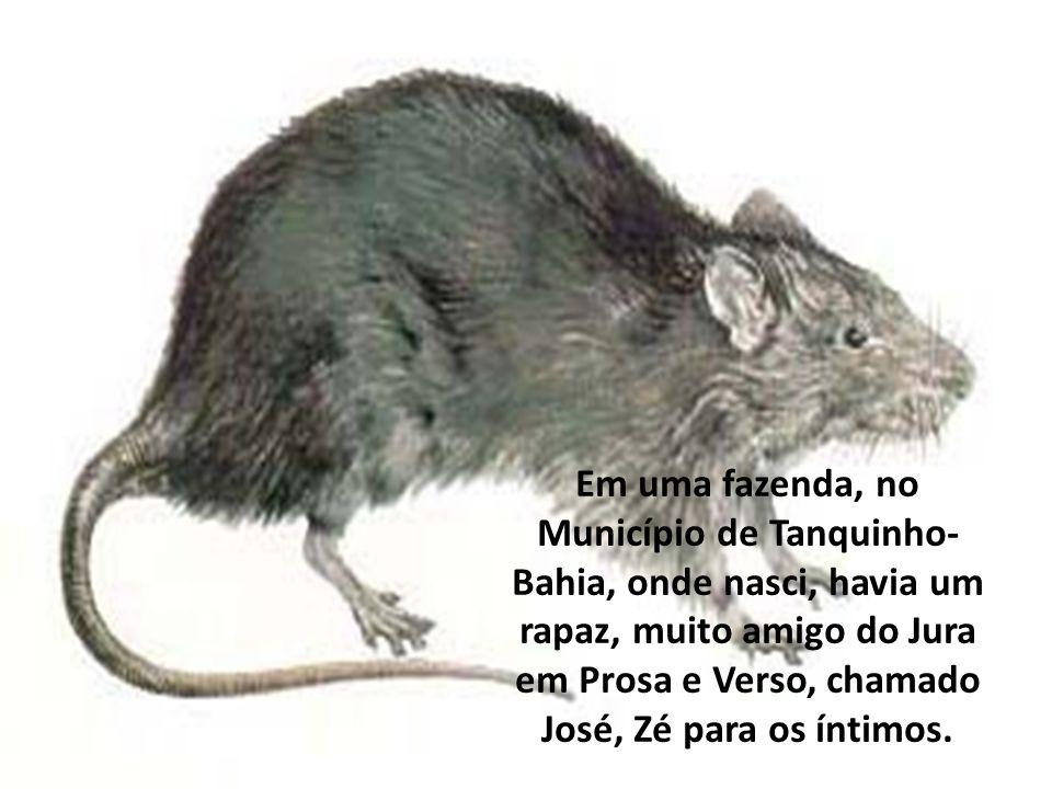 Em uma fazenda, no Município de Tanquinho- Bahia, onde nasci, havia um rapaz, muito amigo do Jura em Prosa e Verso, chamado José, Zé para os íntimos.