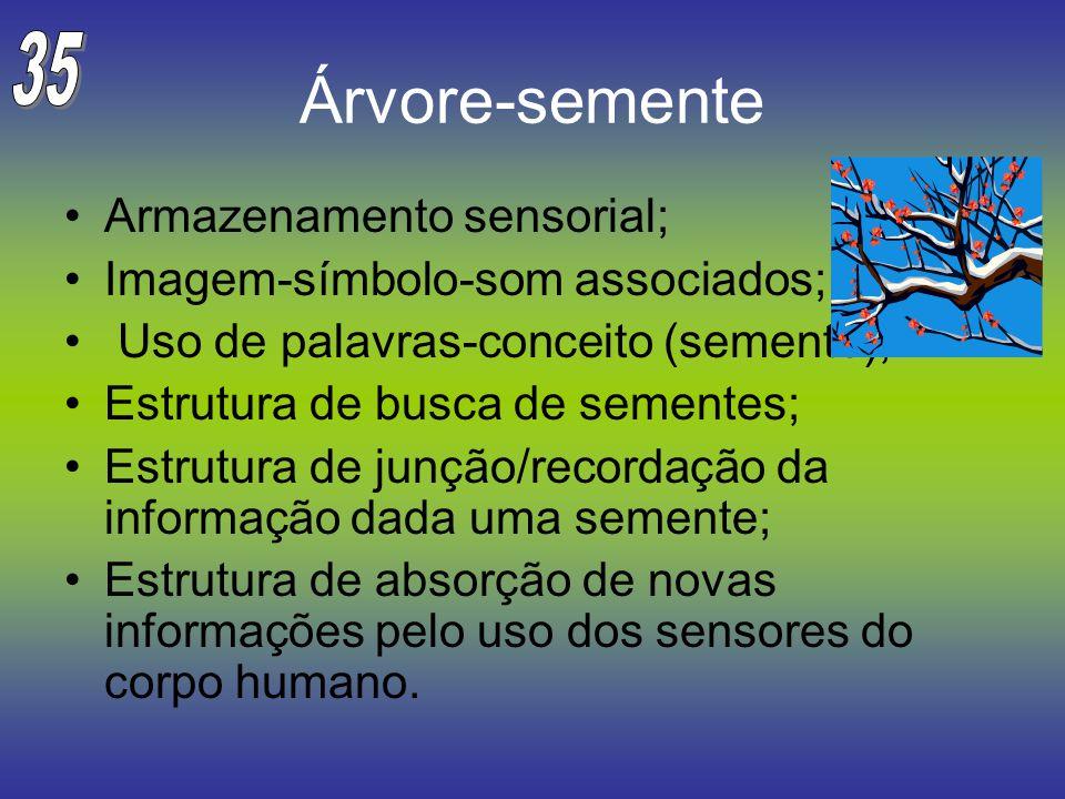 Árvore-semente Armazenamento sensorial; Imagem-símbolo-som associados; Uso de palavras-conceito (semente); Estrutura de busca de sementes; Estrutura d