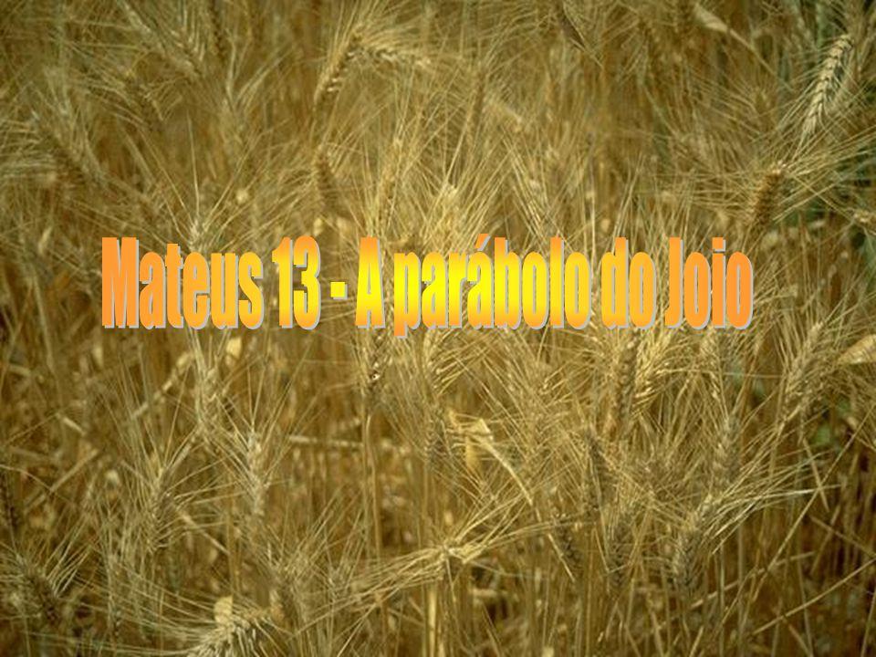 Mateus 13 24 Propôs-lhes outra parábola, dizendo: O reino dos céus é semelhante ao homem que semeou boa semente no seu campo; 25 mas, enquanto os homens dormiam, veio o inimigo dele, semeou joio no meio do trigo, e retirou-se.