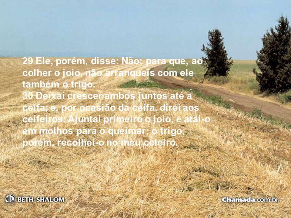 29 Ele, porém, disse: Não; para que, ao colher o joio, não arranqueis com ele também o trigo. 30 Deixai crescer ambos juntos até a ceifa; e, por ocasi