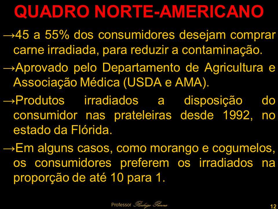 12 Professor Rodrigo Penna QUADRO NORTE-AMERICANO 45 a 55% dos consumidores desejam comprar carne irradiada, para reduzir a contaminação.