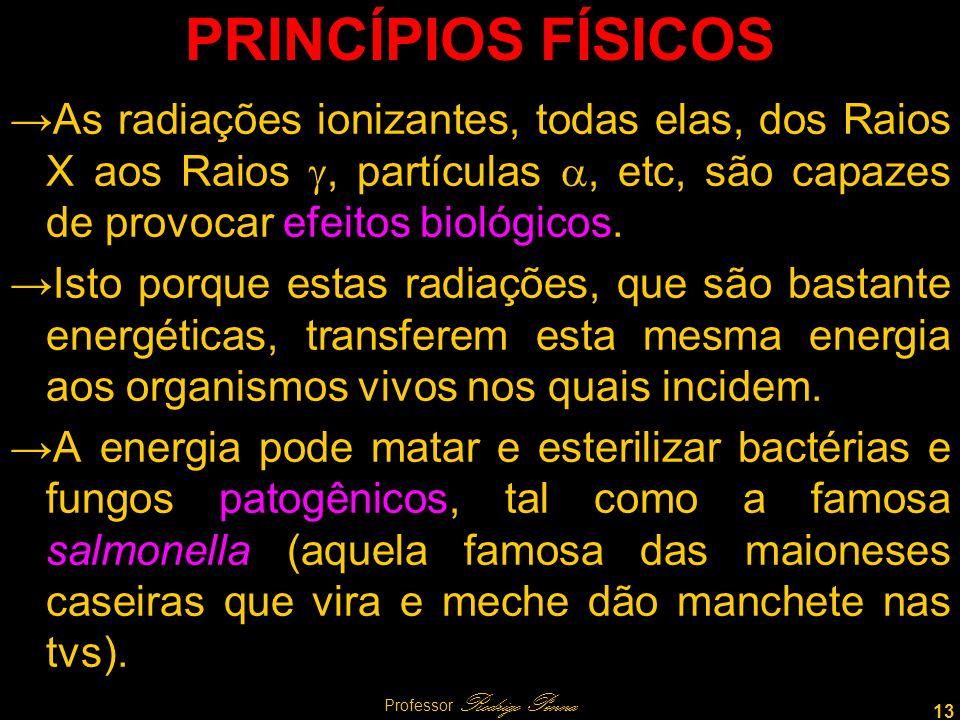 13 Professor Rodrigo Penna PRINCÍPIOS FÍSICOS As radiações ionizantes, todas elas, dos Raios X aos Raios, partículas, etc, são capazes de provocar efeitos biológicos.