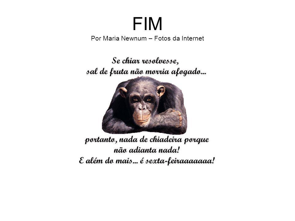 FIM Por Maria Newnum – Fotos da Internet
