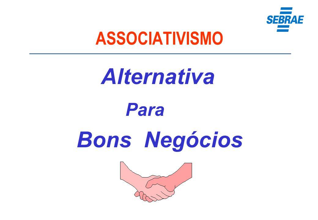 Benefícios do Associativismo Maior poder de representatividade, mesmo sendo pequenos.