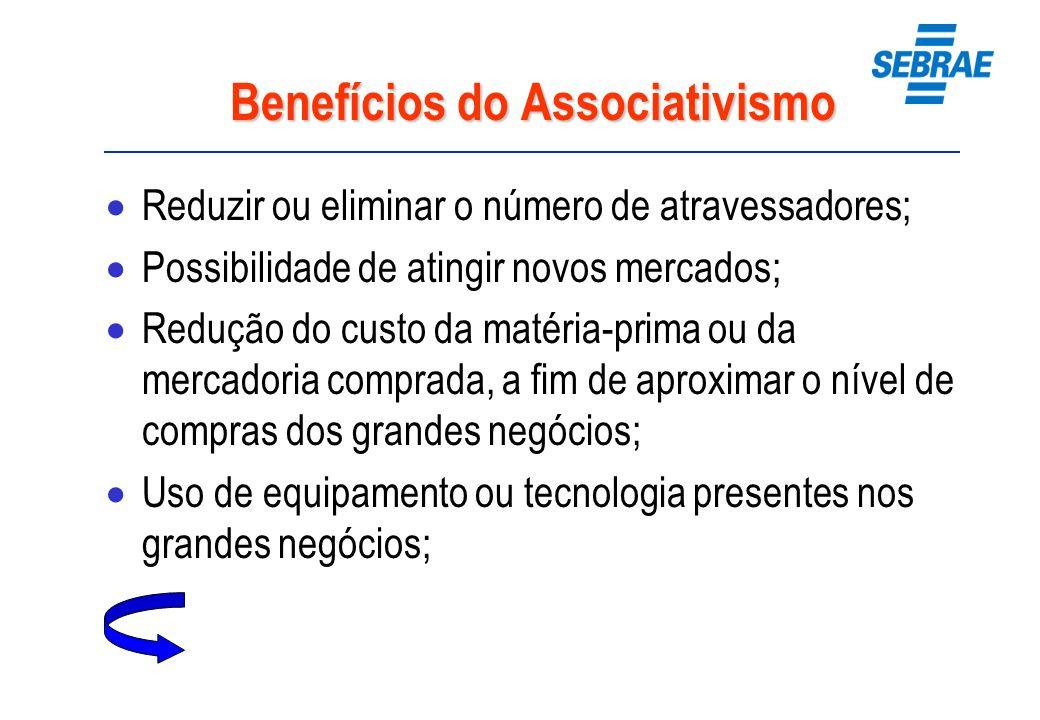 Benefícios do Associativismo Reduzir ou eliminar o número de atravessadores; Possibilidade de atingir novos mercados; Redução do custo da matéria-prim