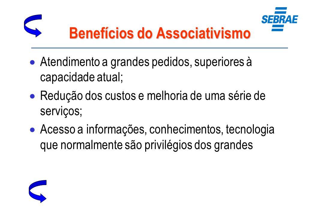 Benefícios do Associativismo Atendimento a grandes pedidos, superiores à capacidade atual; Redução dos custos e melhoria de uma série de serviços; Ace