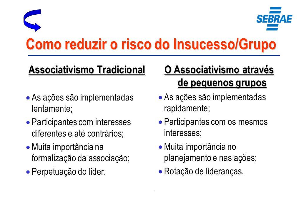 Como reduzir o risco do Insucesso/Grupo Associativismo Tradicional As ações são implementadas lentamente; Participantes com interesses diferentes e at