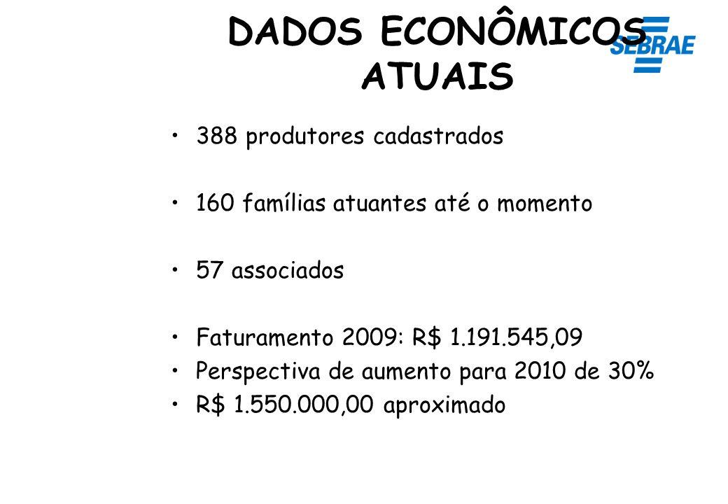 388 produtores cadastrados 160 famílias atuantes até o momento 57 associados Faturamento 2009: R$ 1.191.545,09 Perspectiva de aumento para 2010 de 30%