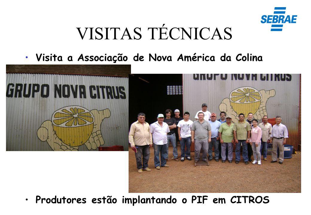 VISITAS TÉCNICAS Produtores estão implantando o PIF em CITROS Visita a Associação de Nova América da Colina