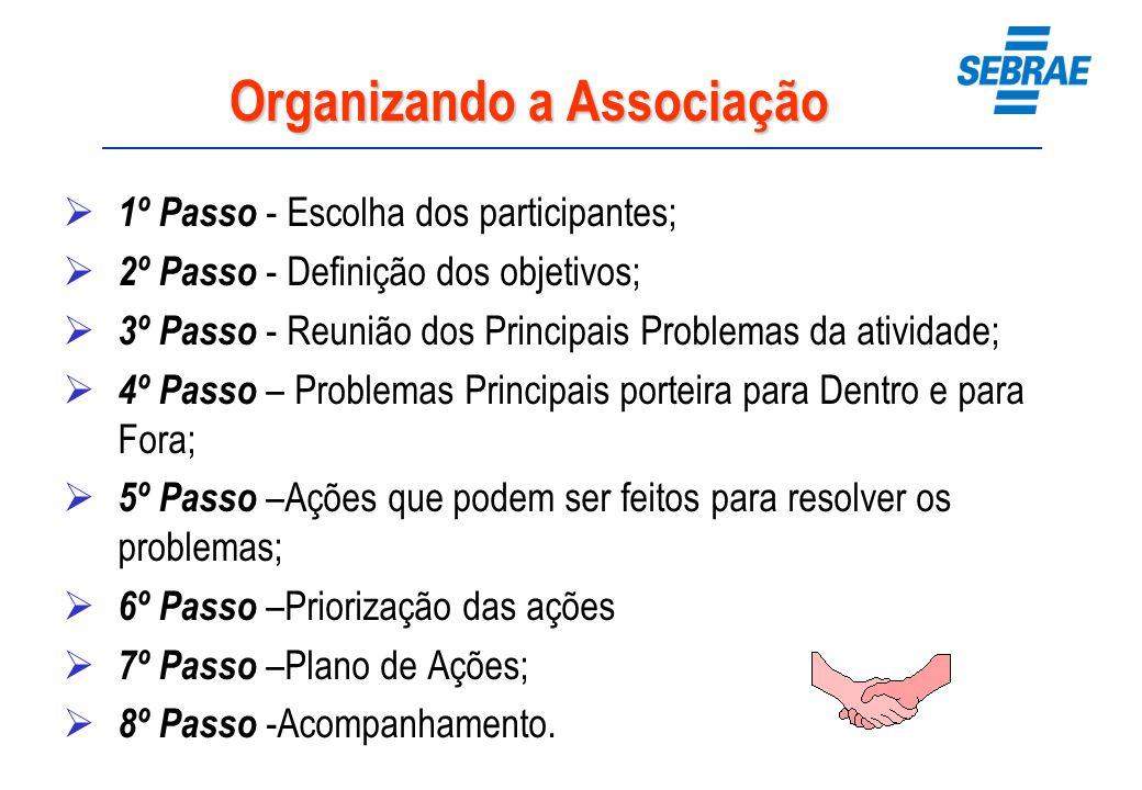 Organizando a Associação 1º Passo - Escolha dos participantes; 2º Passo - Definição dos objetivos; 3º Passo - Reunião dos Principais Problemas da ativ