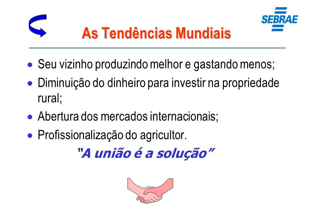 As Tendências Mundiais Seu vizinho produzindo melhor e gastando menos; Diminuição do dinheiro para investir na propriedade rural; Abertura dos mercado