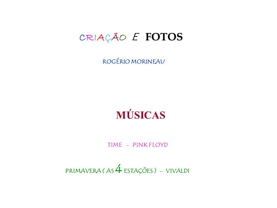 QUERÊNCIA HOSTEL Alto Caparaó Minas Gerais Brasil Tel: (32)37472566 e-mail: turismoquerencia@uol.com.br Site: www.picodabandeiratur.tur.br Solange e Rogério Morineau