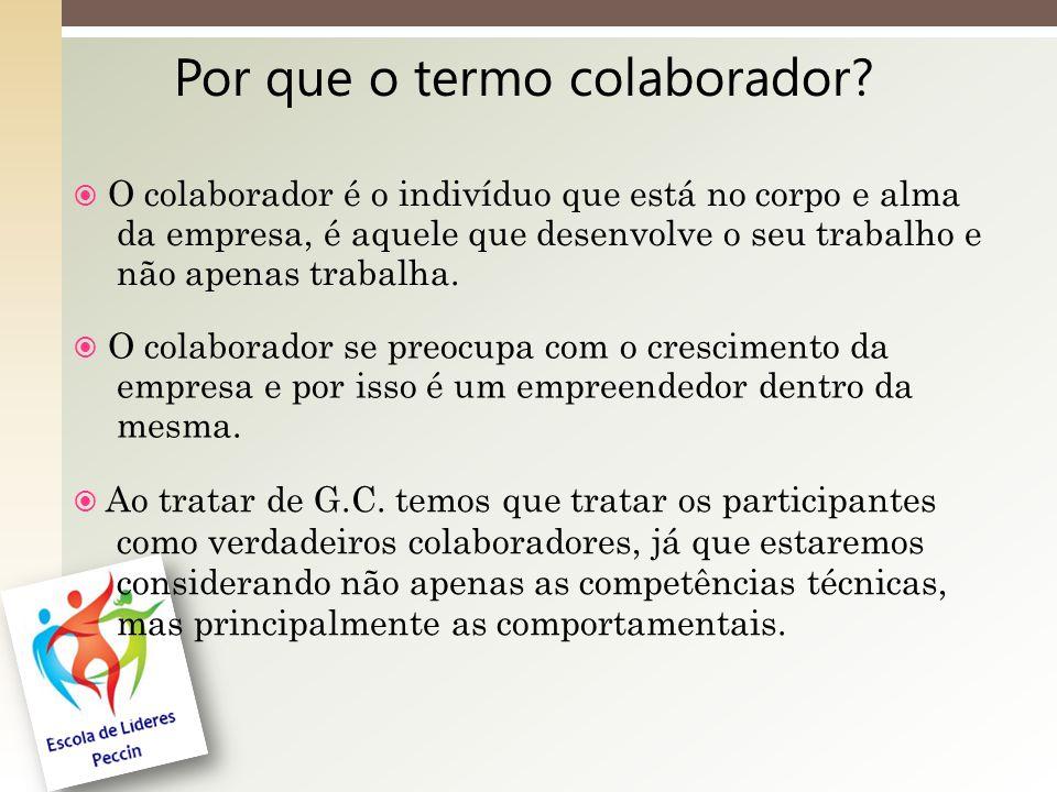 Por que o termo colaborador.
