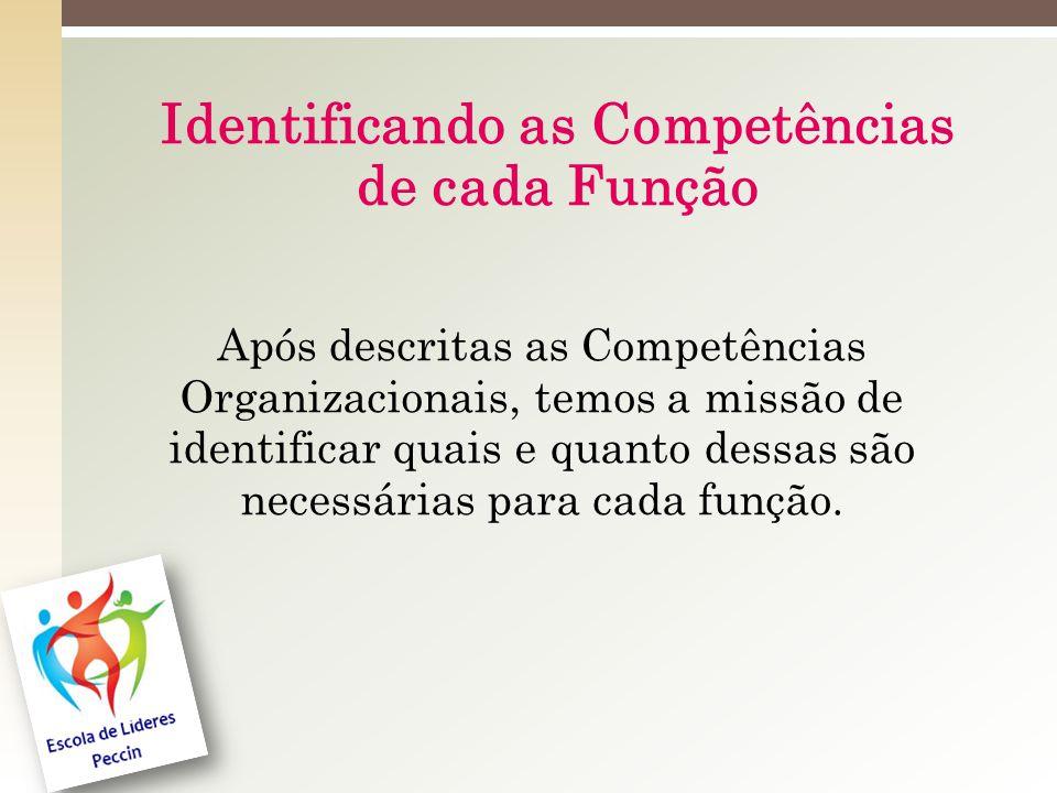 Identificando as Competências de cada Função Após descritas as Competências Organizacionais, temos a missão de identificar quais e quanto dessas são necessárias para cada função.