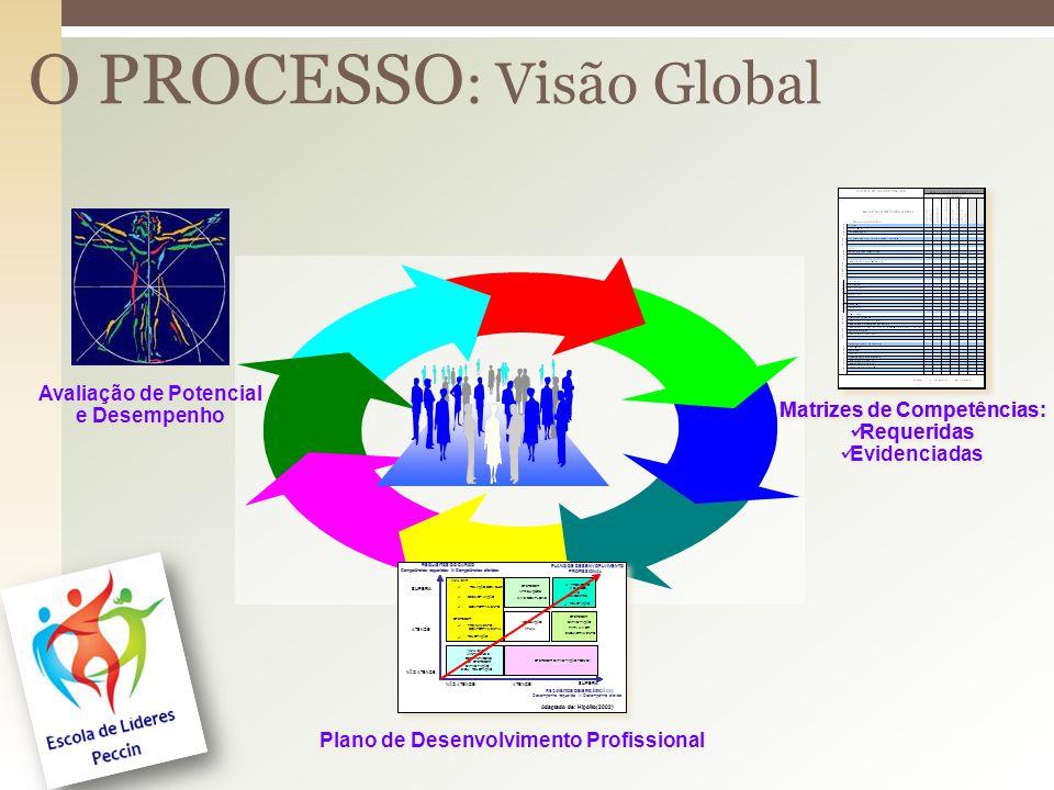 O PROCESSO : Visão Global Avaliação de Potencial e Desempenho Avaliação de Potencial e Desempenho Matrizes de Competências: Requeridas Evidenciadas Matrizes de Competências: Requeridas Evidenciadas Plano de Desenvolvimento Profissional Adaptado de: Hipólito(2002) ANALISAR: RELAÇÃO COM CHEFIA DESMOTIVAÇÃO COMPORTAMENTO OFERECER: TREINAMENTO COMPORTAMENTAL RELOTAÇÃO OFERECER ATRIBUIÇÕES MAIS COMPLEXAS OFERECER CAPACITAÇÃO TÉCNICA OFERECER CAPACITAÇÃO PARA MAIOR ENQUADRAMENTO ATENDE SUPERA NÃO ATENDE REQUISITOS DE EFICÁCIA REQUISITOS DO CARGO Competências requeridas X Competências aferidas SUPERA ATENDE NÃO ATENDE ANALISAR VANTAGENS E DESVANTAGENS DE OFERECER CAPACITAÇÃO E/OU RELOTAÇÃO ADEQUAÇÃO ATUAL PROMOÇÃO A CARGOS MAIS EXIGENTES RELOTAÇÃO PLANO DE DESENVOPLVIMENTO PROFISSIONAL Adaptado de: Hipólito(2002) ANALISAR: RELAÇÃO COM CHEFIA DESMOTIVAÇÃO COMPORTAMENTO OFERECER: TREINAMENTO COMPORTAMENTAL RELOTAÇÃO OFERECER ATRIBUIÇÕES MAIS COMPLEXAS OFERECER CAPACITAÇÃO TÉCNICA OFERECER CAPACITAÇÃO PARA MAIOR ENQUADRAMENTO ATENDE SUPERA NÃO ATENDE REQUISITOS DE EFICÁCIA Desempenho requerido X Desempenho aferido REQUISITOS DO CARGO Competências requeridas X Competências aferidas SUPERA ATENDE NÃO ATENDE ANALISAR VANTAGENS E DESVANTAGENS DE OFERECER CAPACITAÇÃO E/OU RELOTAÇÃO ADEQUAÇÃO ATUAL PROMOÇÃO A CARGOS MAIS EXIGENTES RELOTAÇÃO PLANO DE DESENVOPLVIMENTO PROFISSIONAL Matrizes de Competências: Requeridas Matrizes de Competências: Requeridas