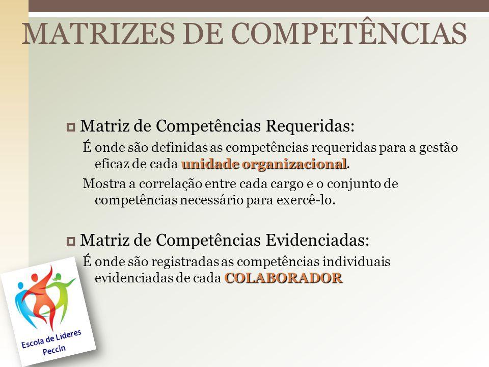 MATRIZES DE COMPETÊNCIAS Matriz de Competências Requeridas: unidade organizacional É onde são definidas as competências requeridas para a gestão eficaz de cada unidade organizacional.