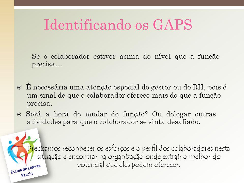 Identificando os GAPS Se o colaborador estiver acima do nível que a função precisa… É necessária uma atenção especial do gestor ou do RH, pois é um sinal de que o colaborador oferece mais do que a função precisa.