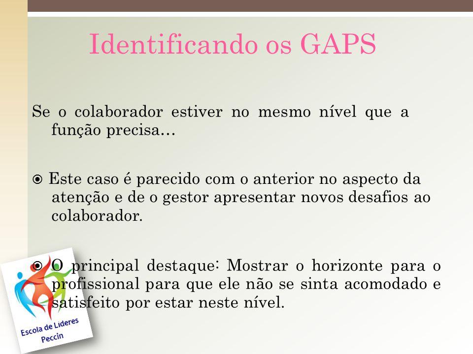 Identificando os GAPS Se o colaborador estiver no mesmo nível que a função precisa… Este caso é parecido com o anterior no aspecto da atenção e de o gestor apresentar novos desafios ao colaborador.