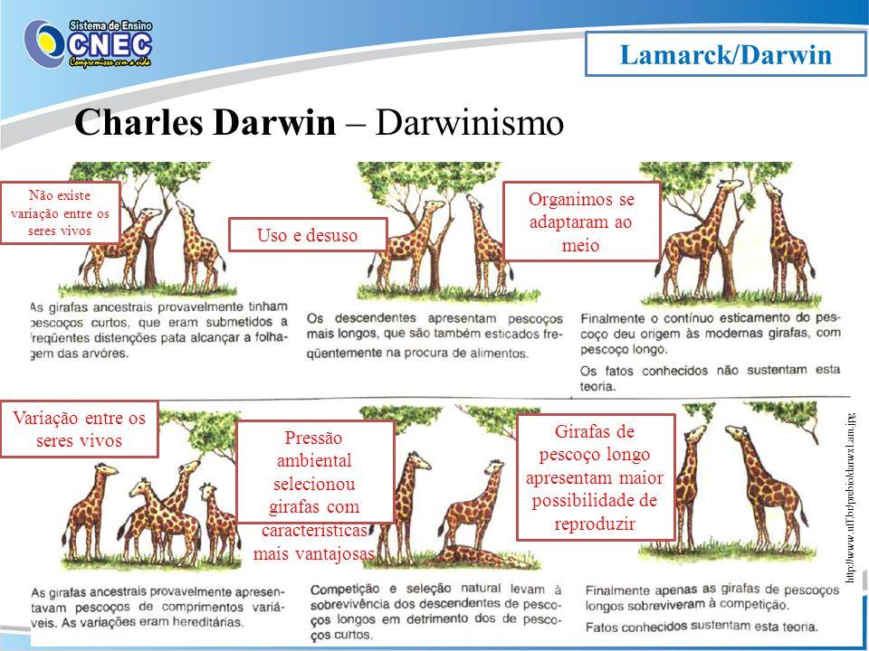 Lamarck/Darwin Charles Darwin – Darwinismo http://www.uff.br/prebio/darwxLam.jpg Variação entre os seres vivos Uso e desuso Organimos se adaptaram ao meio Pressão ambiental selecionou girafas com características mais vantajosas Girafas de pescoço longo apresentam maior possibilidade de reproduzir Não existe variação entre os seres vivos