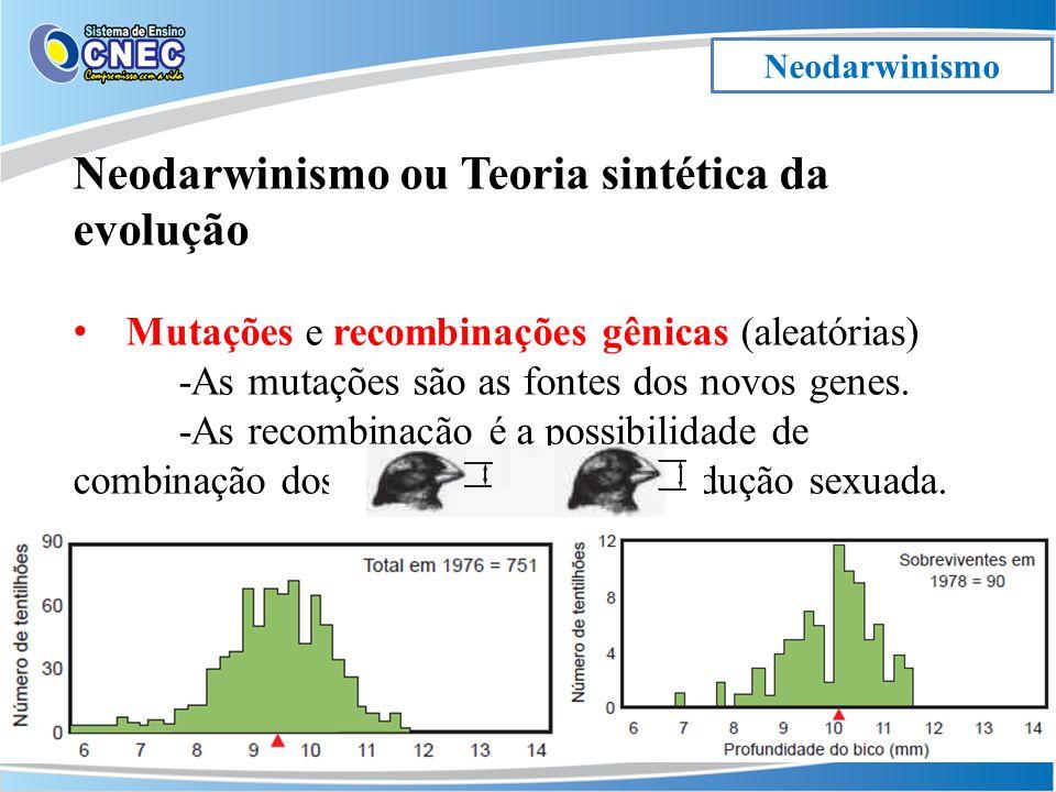 Neodarwinismo Neodarwinismo ou Teoria sintética da evolução Mutações e recombinações gênicas (aleatórias) -As mutações são as fontes dos novos genes.