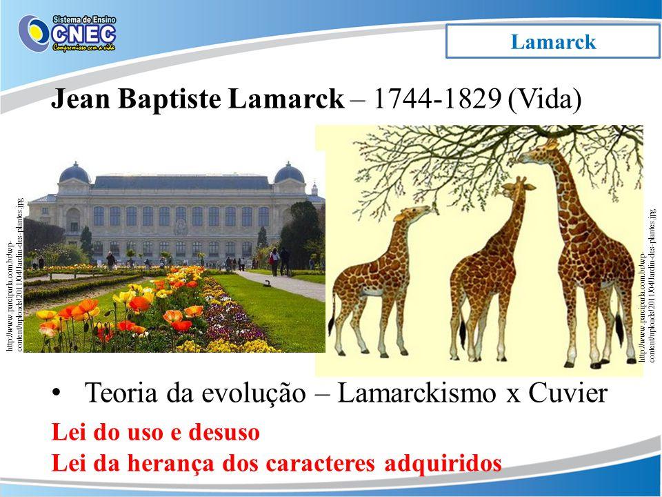 Lamarck Jean Baptiste Lamarck – 1744-1829 (Vida) Teoria da evolução – Lamarckismo x Cuvier Lei do uso e desuso Lei da herança dos caracteres adquiridos http://www.parciparla.com.br/wp- content/uploads/2011/04/Jardin-des-plantes.jpg