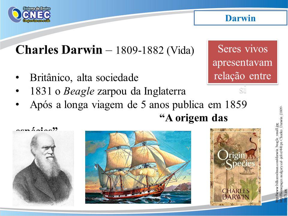 Darwin Charles Darwin – 1809-1882 (Vida) Britânico, alta sociedade 1831 o Beagle zarpou da Inglaterra Após a longa viagem de 5 anos publica em 1859 A origem das espécies http://www.billcasselman.com/darwin_beagle_small.jpg http://homepages.ucalgary.ca/~jefox/441px-Charles_Darwin_(1809- 1882).jpg Seres vivos apresentavam relação entre si