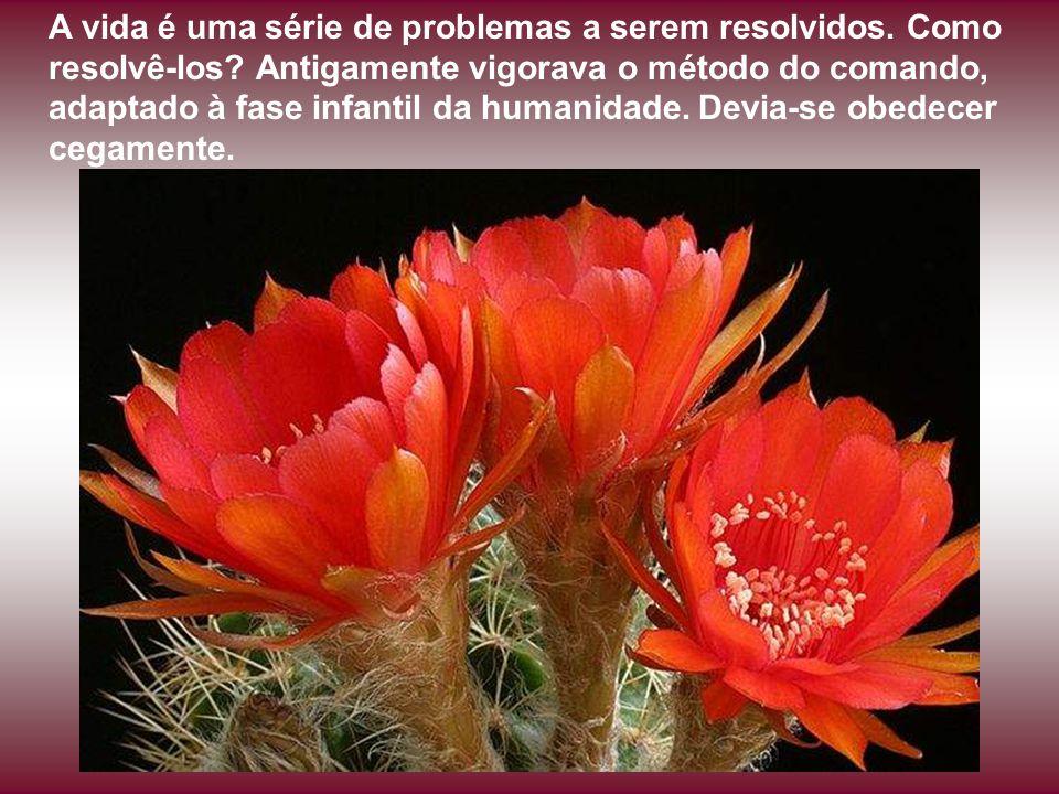 A vida é uma série de problemas a serem resolvidos.
