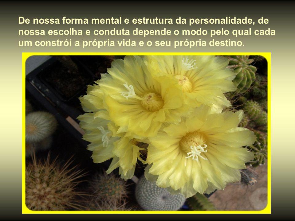 De nossa forma mental e estrutura da personalidade, de nossa escolha e conduta depende o modo pelo qual cada um constrói a própria vida e o seu própria destino.
