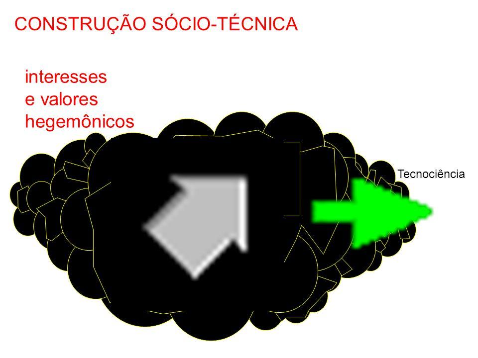 CONSTRUÇÃO SÓCIO-TÉCNICA interesses e valores relevantes