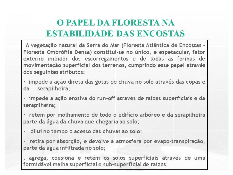 A vegetação natural da Serra do Mar (Floresta Atlântica de Encostas - Floresta Ombrófila Densa) constitui-se no único, e espetacular, fator externo in