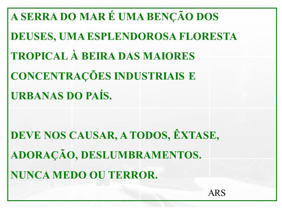 A SERRA DO MAR É UMA BENÇÃO DOS DEUSES, UMA ESPLENDOROSA FLORESTA TROPICAL À BEIRA DAS MAIORES CONCENTRAÇÕES INDUSTRIAIS E URBANAS DO PAÍS. DEVE NOS C