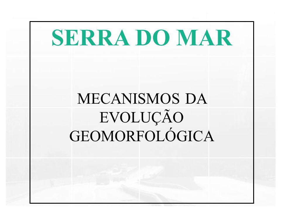 SERRA DO MAR MECANISMOS DA EVOLUÇÃO GEOMORFOLÓGICA