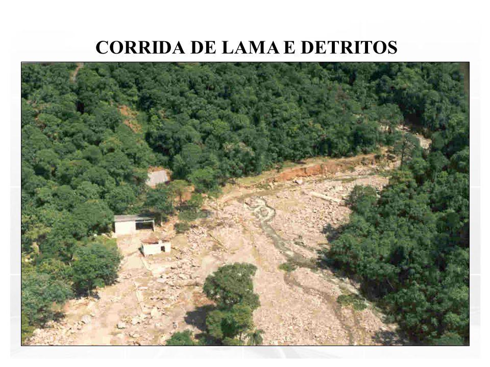 CORRIDA DE LAMA E DETRITOS