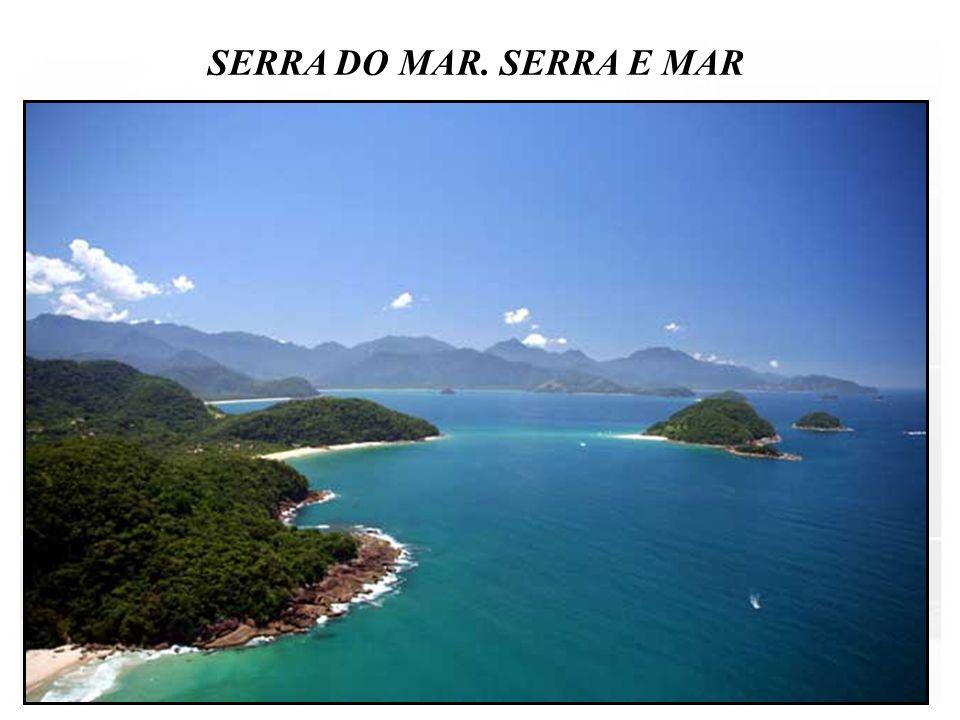 SERRA DO MAR. SERRA E MAR