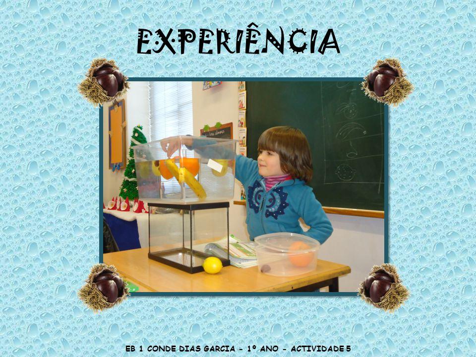 EXPERIÊNCIA EB 1 CONDE DIAS GARCIA - 1º ANO - ACTIVIDADE 5